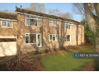 1 bedroom flat in Ranmoor Chase, Sheffield, S10 (1 bed)