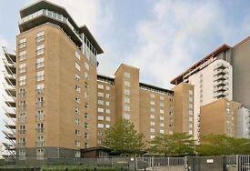 Spacious 2 Bed 2 Bath Apartment in Canary Wharf