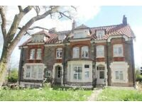 Square Quarters present spacious studio apartment to rent in crouch hill N4.