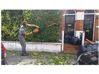 M&M Tree surgeon Garden and landscape and Rubbish and demolition house clearance London