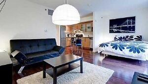 Spacious Bachelor in Downtown
