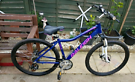 Raleigh nova bike