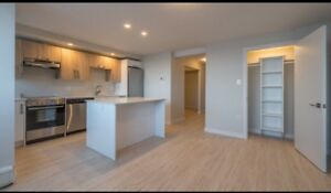 Luxury one bedroom lease take over-from Jan 1st