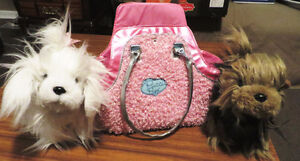 Two crazy haired pets with their own carrying purse
