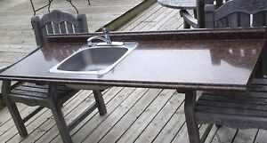 Countertop with Single Sink and Moen Tap