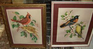 }}} Pair of Vincent Bird & Botanical Prints {{{