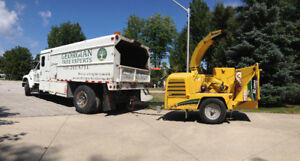 1999 Ford F800 Arbor Chip Truck