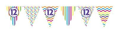 ** 12ft RAINBOW 12 BIRTHDAY FLAG BUNTING CHILDRENS 12th STRIPES SPOTS DECORATION