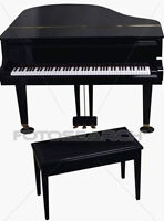 Piano lessons - high quality, lower rate, can be at your home!!