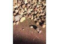 Free garden cream stones