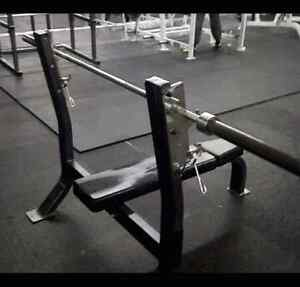 Commercial Nautilus olympic flat bench