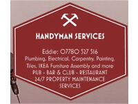 HANDYMAN SERVICES: plumbing, electrical, painting, tiles, flooring, IKEA furniture assembly & more