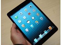 iPad mini 2 with cover
