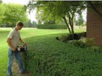 Lawn cutter/gardener