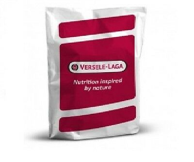 Versele Laga Barley Extra 25kg Superior Racing Pigeon/Wild Bird Feed-Food-Seed