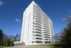 Western U Location! Gorgeous Penthouse. Must see London Ontario image 3