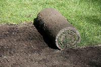 Sod installation and removal services BEST RATES
