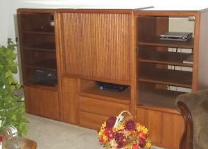 Entertainment Center - Solid Oak Fronts