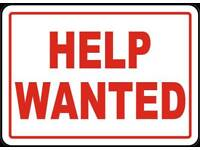 **Wanted** Flat or house to rent