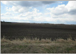 80 ac high farm land located 15 min NW of Edmonton with well