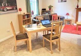 Spacious, tranquil, fully equipped annexe double up as home office for hire during the day