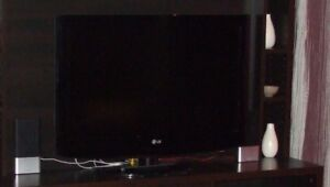 Téléviseur LG 29 po.