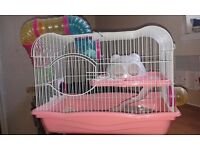 Hamster Cage £10 collection from Fulbourn