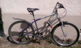 Bikes, single or lot