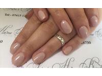 Manicure, Pedicure , INK Gel polish, CND Vinylux. Two week manicure
