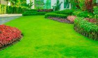 OnTheGreen Landscaping Inc.
