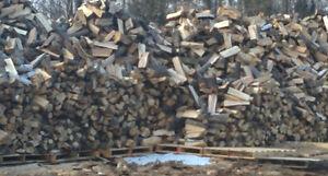 bois de chaffage\firewood