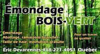 Émondage Bois-Vert (déneigement toiture disponible)