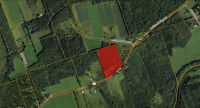 12 Acres minutes from Salisbury