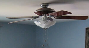 Very nice Ceiling Fan with light
