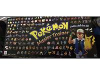 Pokemon master trainer 1999