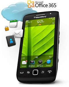 Software Repair Service for BlackBerry Bold Curve Torch