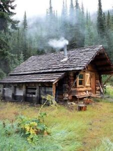 Small cabin or apartment for retired senior with 19 year old dog