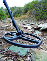 RENT A METAL DETECTOR OR HIRE A SPECIALIST
