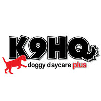 K9HQ LEAD DOG GROOMER
