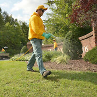 Book your fall cleaning from The Grounds Guys