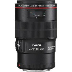 WANTED Canon 100mm macro L  lens $600