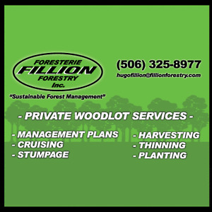 SELLING YOUR WOODLOT OR STUMPAGE???