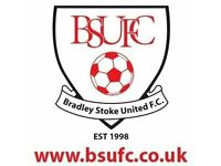 Bradley Stoke United Football 10th Anniversary Tournament 3/4 June 2017