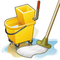 Experienced Cleaners
