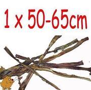 Ochsenziemer 50