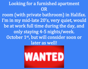 Furnished apartment or room