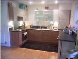 A beautiful and modern recent built one bedroom ground floor apartment. On Harman Rise, Ilford