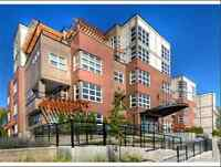 Martin Lofts - Luxury Condominium