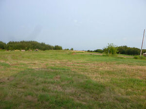 Acreage near Rosthern