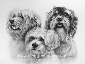 A CUSTOM PET PORTRAIT FROM YOUR OWN PHOTO